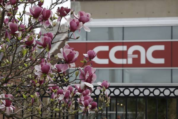 Pink flowers in front of CCAC sign